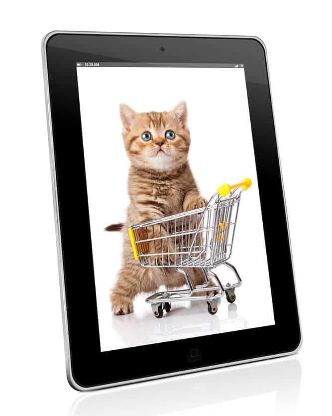 Cat Cart in Ipad picture