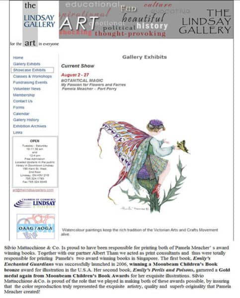 Pamela Meacher Art Award