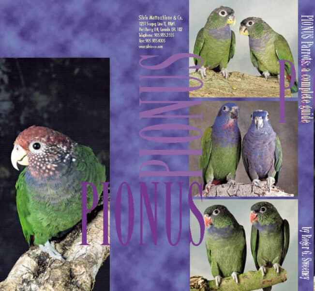 Pionus Parrots A Complete Guide by Roger G. Sweeney