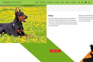 Toronto K9 Center - Working Dog Training