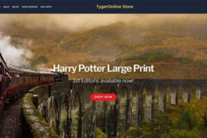 Tygeronline Store - Tygeronline.com/store - Harry Potter Large Print First Editions